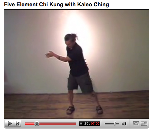 Chi Kung Video