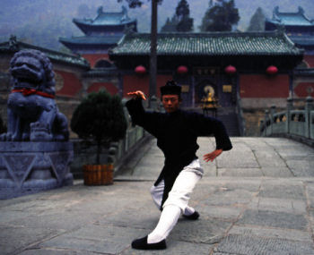 Tai Chi Martial Edge
