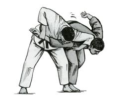 judo3031