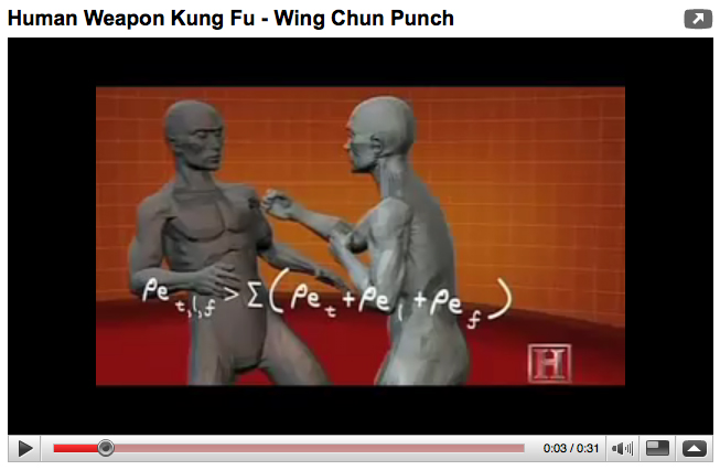 Power of a Wing Chun Punch « Blue Snake Books